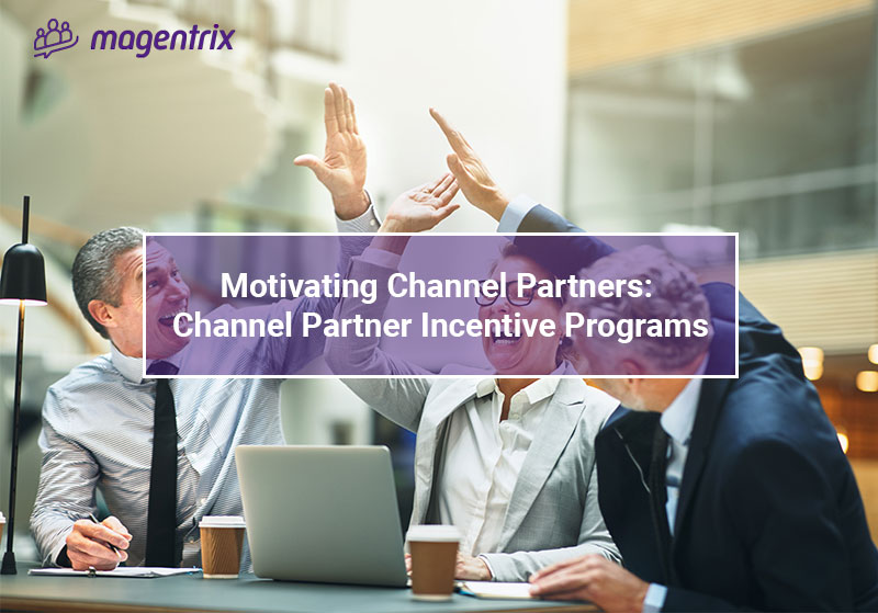 Motivating partners with channel partner incentive programs