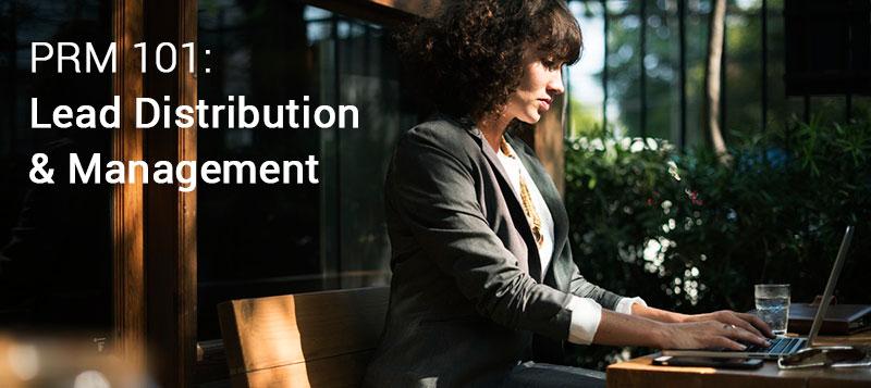Partner Relation Relationship Management: Lead Distribution and Management